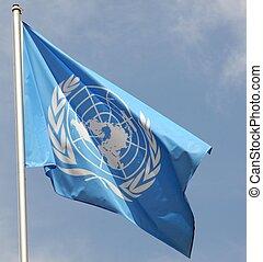 błękitny, zjednoczony, organisation, narody, bandera, un