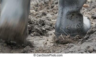 błotnisty, mężczyźni, czyścibut, ścierka, brudny, mokry, gruntowy