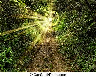 bűbájos, alagút, út, alatt, a, erdő