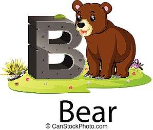 b, alfabet, beer, dierentuin, naast, dier