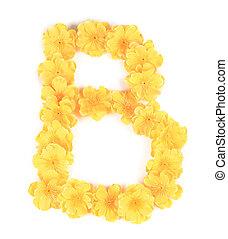 b, alphabet., flor, letra
