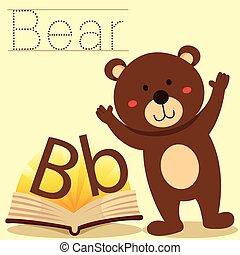 b, illustrator, vocabular, urso