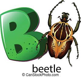 b, letra, besouro