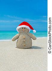 bałwan, dodatni, claus, ocean, święty, plaża, gwiazdkowy kapelusz