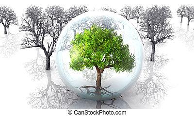 bańka, drzewo, tło, drzewa