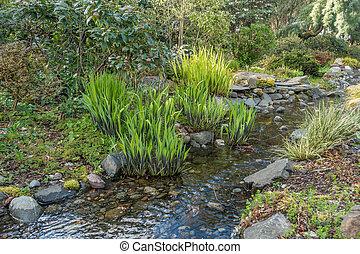 Babbling Brook In Spring