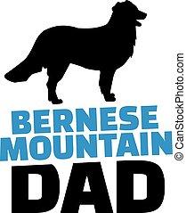 babbo, montagna, bernese, silhouette, cane