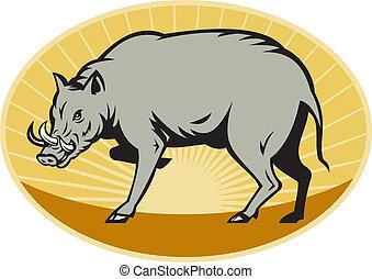 babirusa wild pig attack