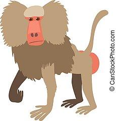 Baboon icon, cartoon style