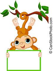 baby aap, op, een, boompje, vasthouden, leeg