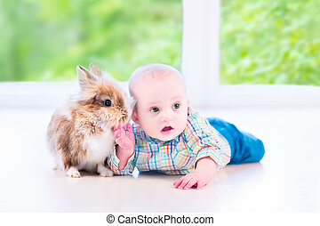 Baby and bunny - Adorable little baby playing with a funny...
