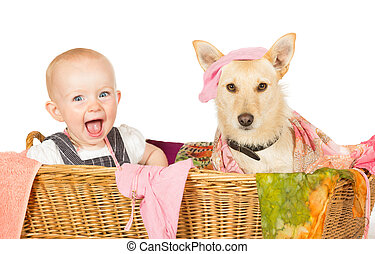 Baby and dog in the laundry basket - Mischievous happy young...