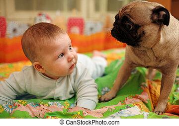 baby and dog - Cute baby girl looking at pug dog. Closeup,...