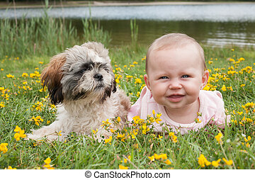 Baby and puppy in the field with buttercups