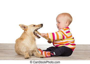 Baby and terrier with chewy bone