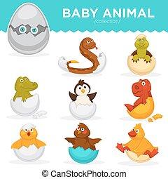 Baby animals hatch eggs cartoon pets hatching vector flat...