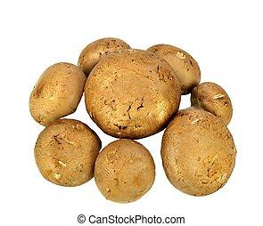 Baby Bella mushrooms