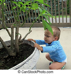 Baby bending down and holding on to a potted plant