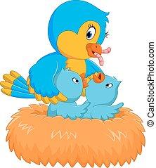baby bird in the nest - mother bird giving baby bird in the...