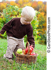 Baby Boy Grabbing Apple from Basket in Autumn