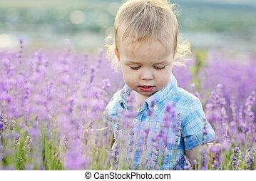 baby boy in  lavender