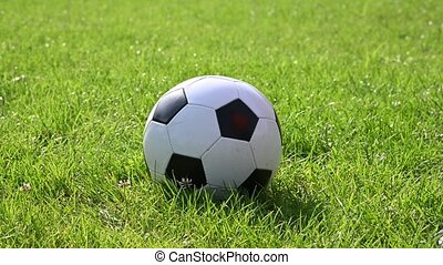 Close up little boy kicks black and white soccer football ball on green grass of turf field pitch, low angle, rear view, 4K