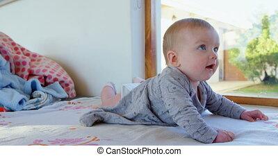 Baby boy lying on sofa 4k - Baby boy lying on sofa at home...