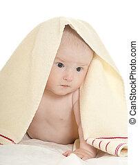 1231fb98c55f Baby boy lying under blanket. Adorable baby boy lying under blanket on a white  background
