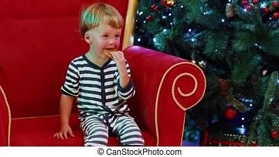baby boy sitting near Christmas tree and eating cookie gingerbread