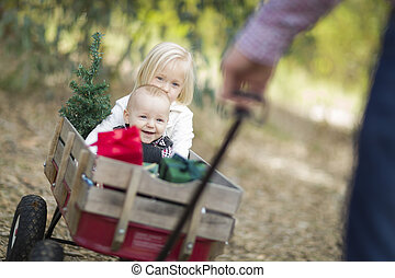 Baby Brother and Sister Pulled in Wagon with Christmas Tree