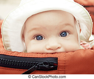 baby buggy - baby in buggy outdoors