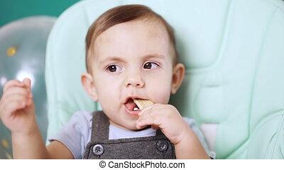 baby, cookie., jongen, stoel, eyes, mooi, jarig, zittende , ...