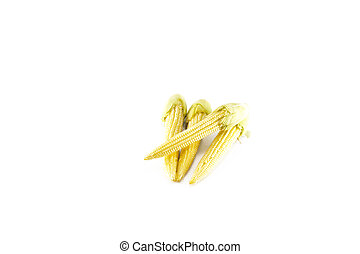 Baby corn on a white background, close-up