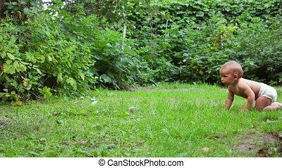 Baby crawling in a garden