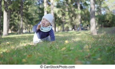 Baby crawling on the grass in the park and eats leaves.