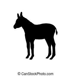 Baby donkey farm mammal black silhouette animal. Vector...