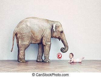 baby elefant, och, mänsklig, baby