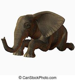 Baby Elephant Kneel - 3D Animal