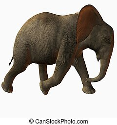 Baby Elephant Walk - 3D Animal