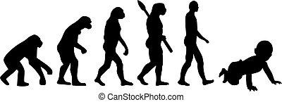Baby evolution