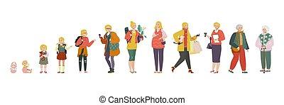 baby, frau, dame, stadien, leute, vektor, abbildung, altes , wachsen, alter, verschieden, auf