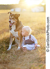 Baby Girl And Pet German Shepherd Dog Relaxing on Farm at Sunset
