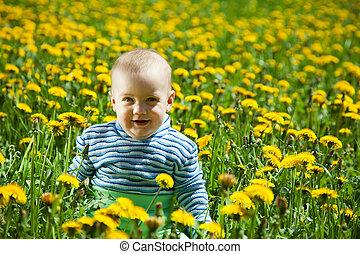 baby girl in  dandelion plant