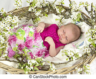 Baby girl in pink inside of basket with spring flowers.