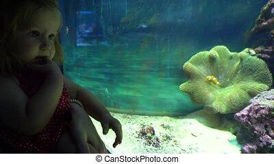Baby girl looking at fish in aquarium