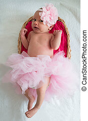 Baby Girl With Pink Tutu And Headband Lying In Wicker Basket