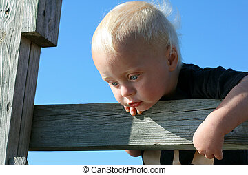 Baby Hanging out on Wooden Fence