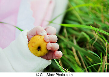 baby holding apples in hands