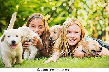 baby, hundebabys, mädels, junger