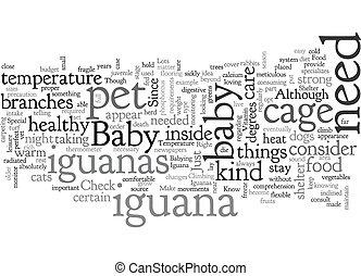 baby iguanas text background wordcloud concept